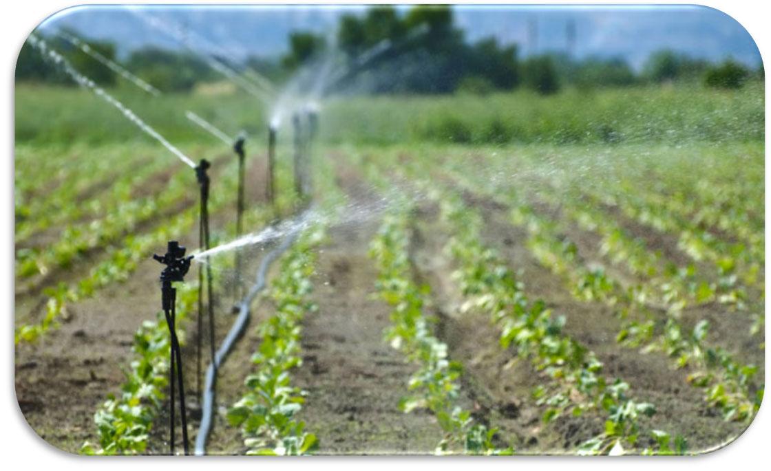 Impiego E Parametri Dell Acqua Per Irrigazione Germoglioverde